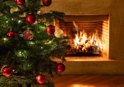 Vánoční otevírací doba 2020