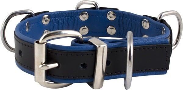 Mister B Slave Collar 4 D-Rings Blue