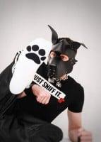Ponožky Sk8erboy Puppy