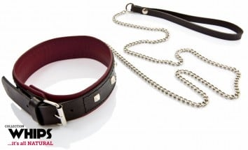 Whips Leather Collar with Leash for Her