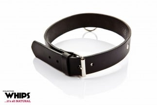 Whips Leather Collar for Him